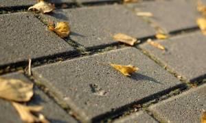 Рецепт бетона для тротуарной плитки