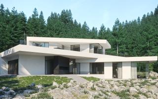 Частный дом из монолитного железобетона